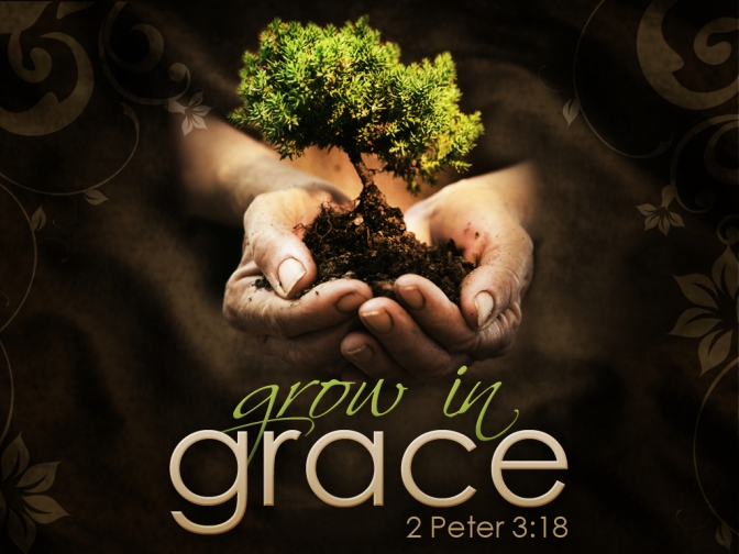 A LOOK BACK: Growing in Grace