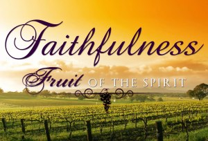 FruitOsp_Faithfulness