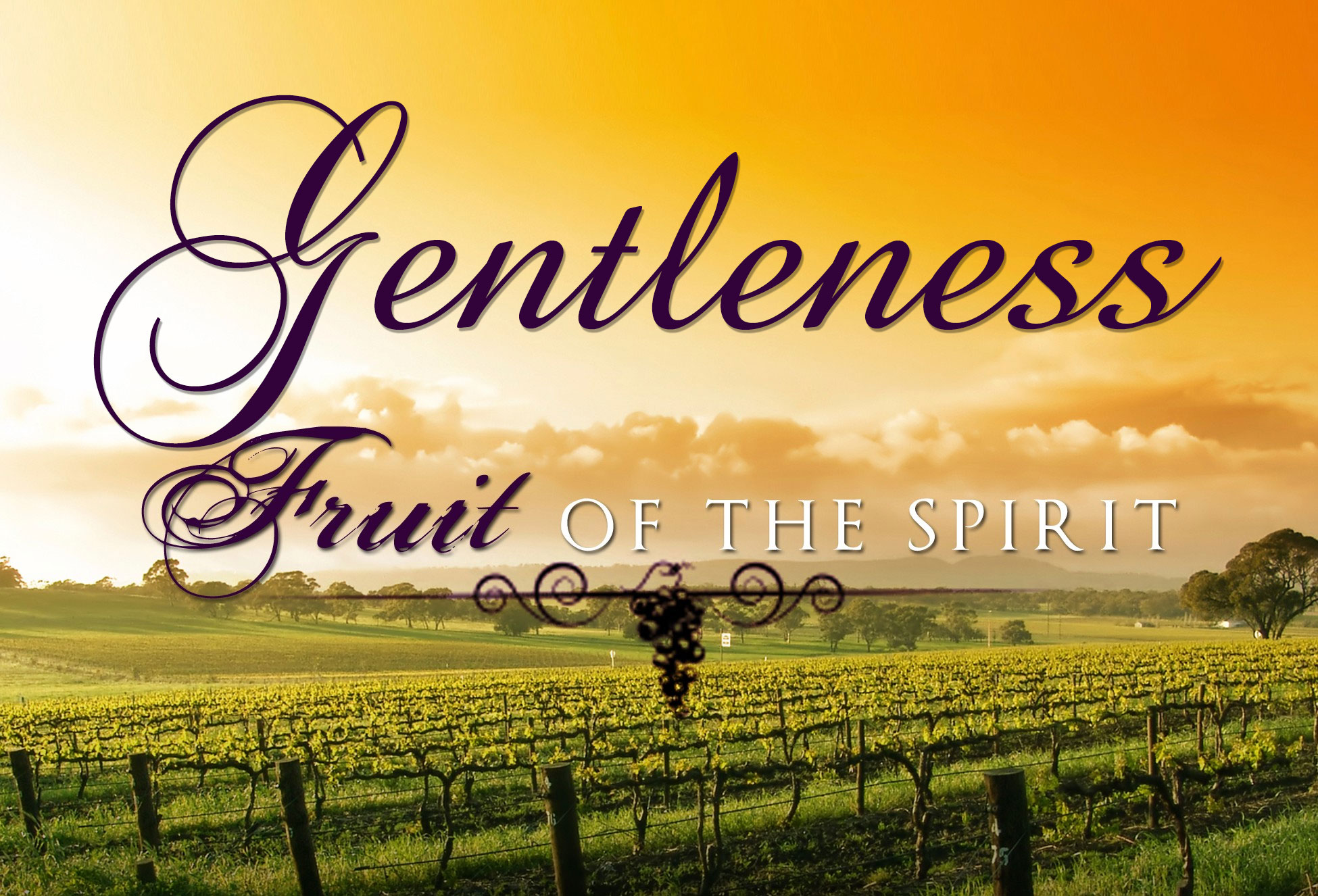 FRUIT OF THE SPIRIT: Gentleness | Life-Giving Water