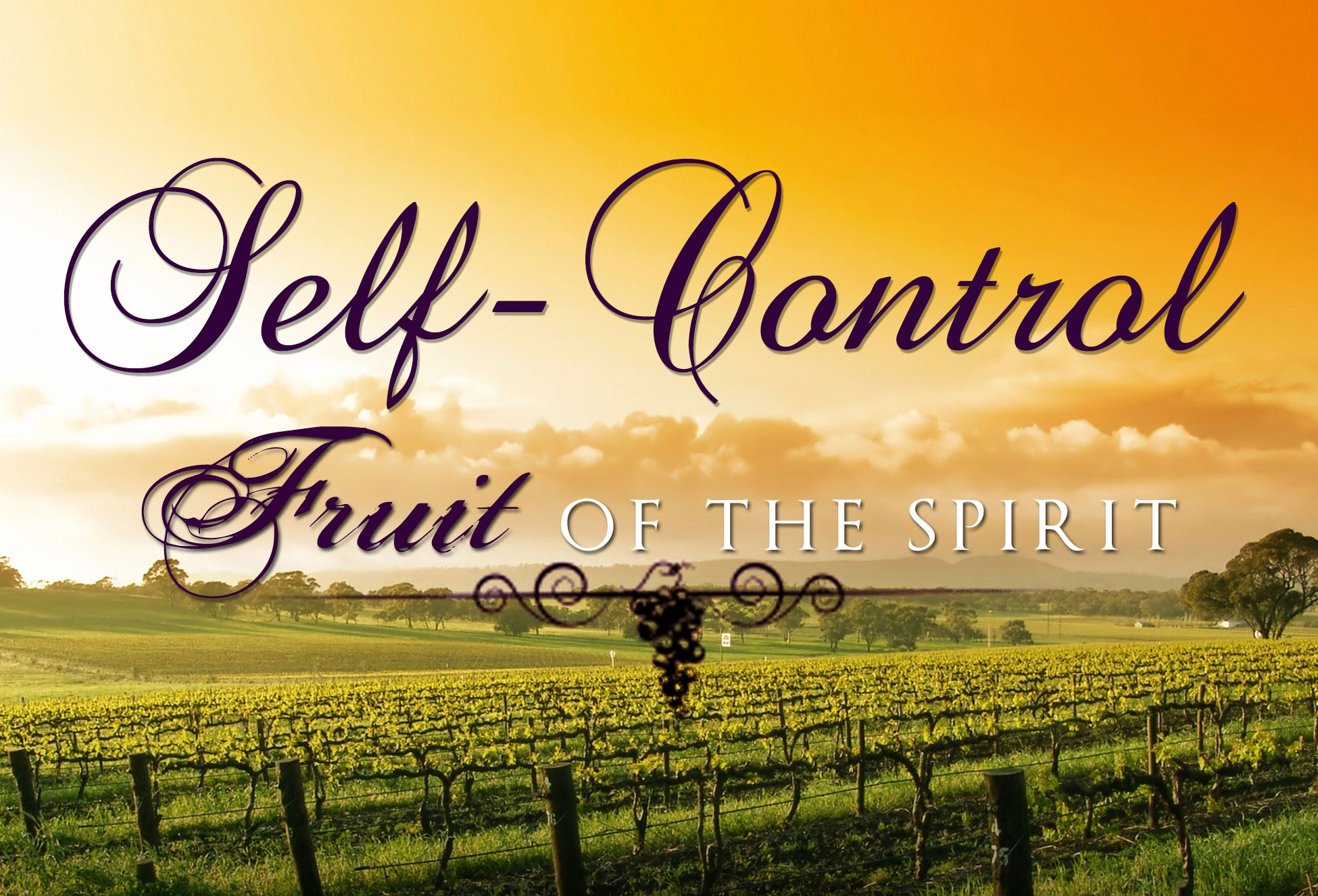 FRUIT OF THE SPIRIT: Self-Control | Life-Giving Water